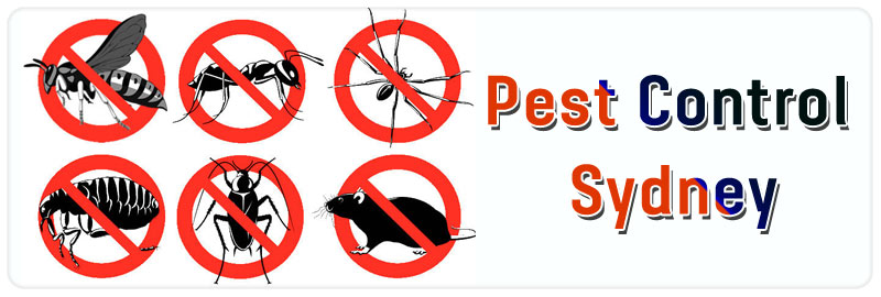 Pest Control Lindfield West