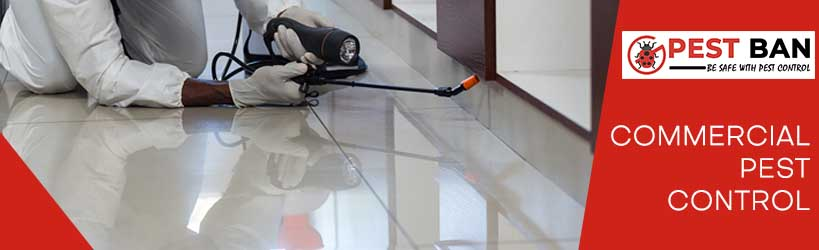 Commercial Pest Control Perth